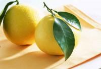 limonedepurazionenatalefestenutrizione