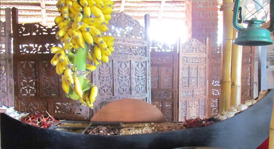india-simona-vignali-viaggio-kerala-febbraio-2014_41