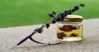 I benefici dell'olio essenziale di lavanda secondo la medicina ayurvedica
