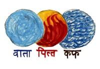 Dosha ayurvedici Vata, Pitta, Kapha: tre in ognuno di noi