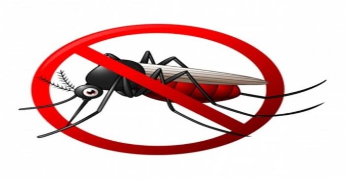 Le zanzare smetteranno di pungerti se mangi questo cibo di ogni giorno