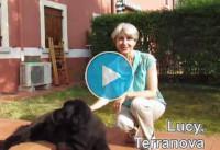 Massaggio ayurvedico per cani e gatti con metodo Ayurvedic Touch®